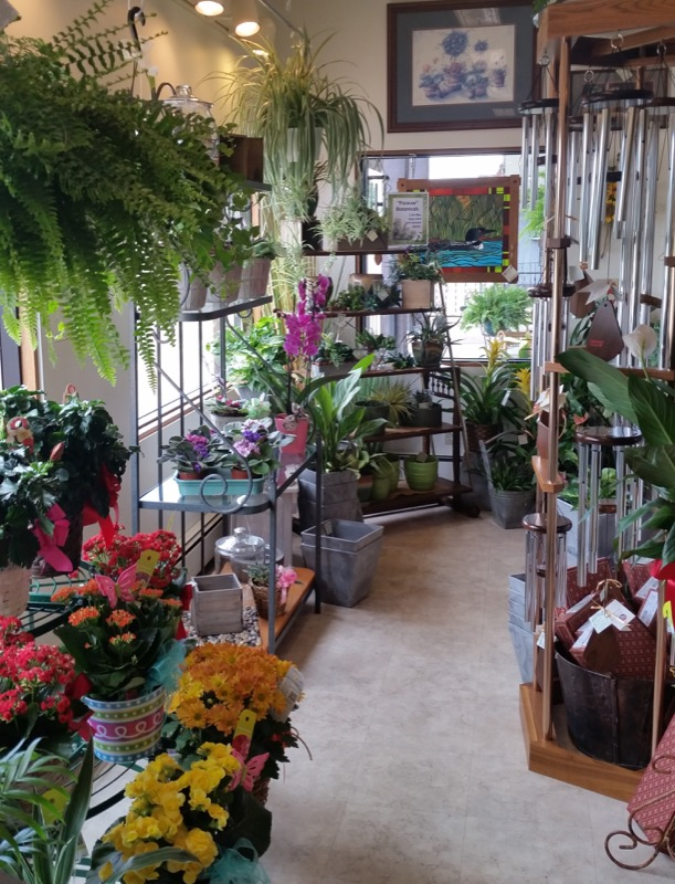 Shaw Florists - Amish & Antiques photo 1